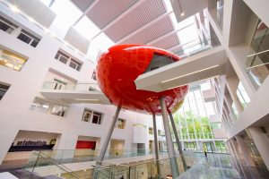 Solent University (1)