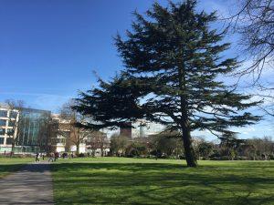 Solent University (5)