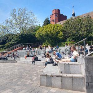 University of Sheffield (2)