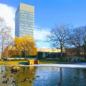 University of Sheffield (5)